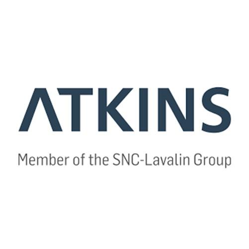 RDV's Clients | Atkins Global | RDV Systems Client